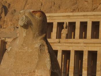 El-Deir El-Bahri Eagle