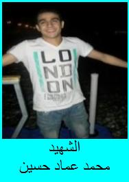 Martyr Mohammad Emad Hussein