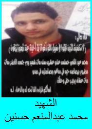 Mohammad Abdel-Moneim Hassanein