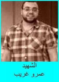 Amr Gharib