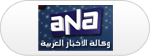 egypt-arab-news-agency